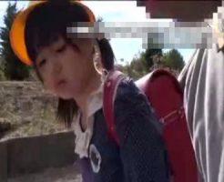 【JSレイプ動画】小○生に声をかけて強引に処女を奪うマジでやばい動画がこちら