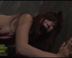 【レイプ動画】凶悪注意!ストーカーに拉致られ地下室に監禁された人妻が肉便器扱いを受ける…