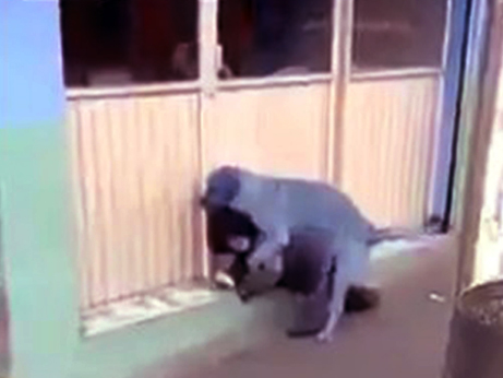 【獣姦】海外で撮影された小人症らしき女性が野良犬に犯されているにも関わらず誰も助けない映像