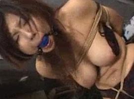 【無修正】緊縛ギャグボールに電マ責めされて悶絶する女性