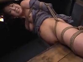重りをつけられ吊るされて三角木馬に乗せられる女性が悲鳴を上げる